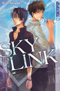 Frontcover Sky Link 1
